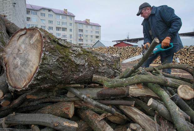 Украинцы запасаются дровами