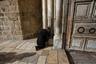 Во время работ паломники приходят к зданию церкви, чтобы помолиться. Их допускают и к месту проведения работ, так как это самое священное место для христиан. Работы по реставрации планируют завершить в марте 2017 года.