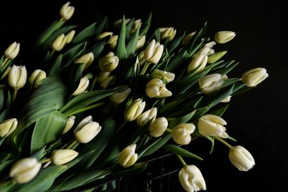 Ради красивого селфи девушки могут арендовать букет из101 розы