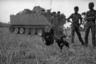 Измученные кровопролитной войной солдаты пытаются отвлечься, устроив импровизированные петушиные бои в заброшенной деревне. Снимок сделан в тот же год, что и «Напалмовая девочка», за три года до окончания войны.
