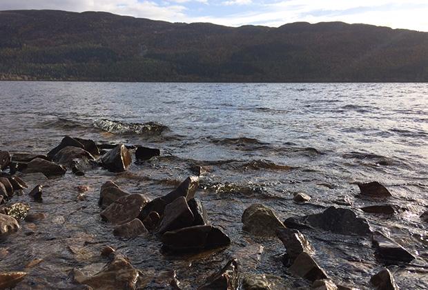 Воды озера Лох-Несс темные из-за большого количества торфа