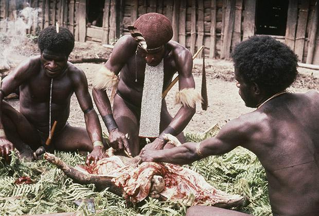В индонезийской части острова Новая Гвинея в южной части Тихого океана живут предположительно четыре десятка «потерянных племен»