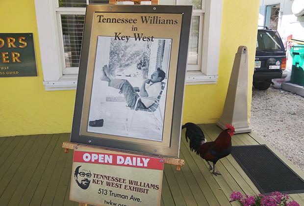Дом-музей Теннесси Уильямса на Ки-Уэсте