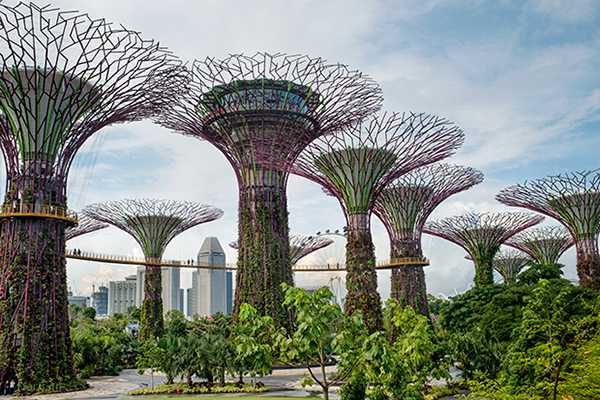 SINGAPORE - 2013/11/29: Tourists walk around on the sky-walk structures at Gardens by the Bay, notable for being one of the top 10 indoor gardens of the world.