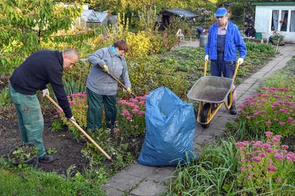 Эксперты призвали 10 млн граждан России поменять профессию