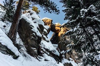 Трое детей во главе с подростком почти замерзли в красноярском заповеднике