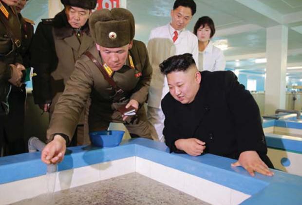 Высший руководитель КНДР Ким Чен Ын на Самчхонской сомоводческой ферме