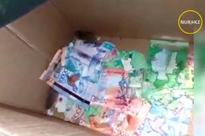 Казахстанские мыши сгрызли деньги в банкомате
