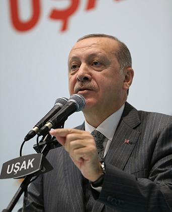 Эрдоган объявляет о начале операции «Оливковая ветвь»