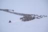 Для загона животных уже много лет здесь используют снегоходы. Это гораздо удобнее, чем передвигаться на оленях. От стада отделяют небольшую часть животных и направляют в кораль. Как уточняет Павел, это особое искусство: оленей очень много, тут важна слаженная работа.
