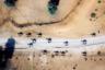 Француженка Джули Милассо использовала дрон, чтобы сфотографировать верблюдов в Дубаи с  высоты птичьего полета. «То, что вы сначала видите, это не верблюд, а его тень, — объясняет она. — В Дубаи природа не всегда доступна. Фотографирование с дрона дало мне этот непростой, уникальный, своеобразный ракурс, и я его обожаю».