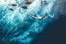 «Долина дос Агуас Милагросас — в числе самых невероятных мест, где я бывал, — пишет бразильский фотограф Родриго Педерзини. — Снаружи похоже на маленькое озеро, но если нырнуть, то понимаешь, насколько оно огромно». Он плавал на глубине около пяти метров, но слышал о ныряльщиках, которые погружались в этот водоем на 200 метров, но так и не достигли дна.