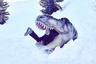 Во время прогулки по австрийским Альпам Надин Вейс случайно обнаружила погребенную под снегом фигуру динозавра. Вид рептилии навел ее на забавную метафору. «Я сразу подумала, что нежелание возвращаться домой из этого снежного рая можно сравнить с ощущением, будто тебя съел динозавр», — игриво подписала снимок она.