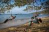 Безмятежный день на берегу океана в бразильском Прайя До Пинто. «Кто такие взрослые? Старые дети», — философствует автор снимка, фотограф Тиаго Варжо из Сан-Пауло.