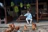 За 24 года падре Пабло освоился на другом краю света, и теперь его не отличить от коренных жителей. Куры несут ему яйца, а на церковной земле растут бананы — это за ними старый священник ходил с мачете в руках.