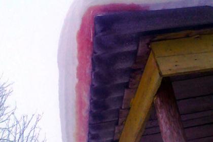 Ученые узнали, почему снег накрышах некоторых домов Архангельской области красного цвета