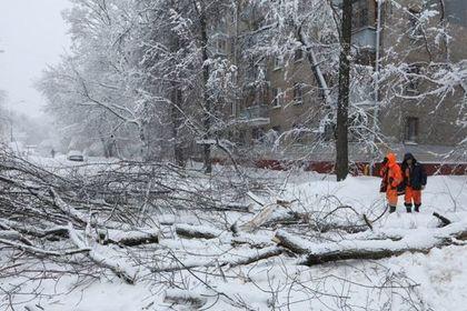 В Москве оценили последствия рекордного снегопада