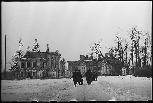 Ленинградский фронт, 1943 год.
