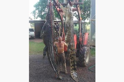 Австралиец поймал живьем двух огромных крокодилов с клыками величиной с ладонь