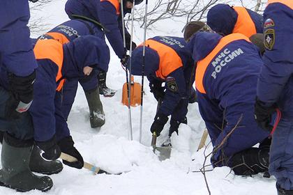 На месте крушения самолета в Подмосковье найдены фрагменты 50 тел