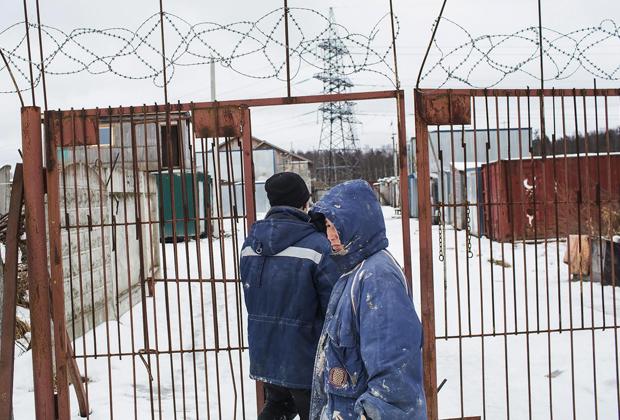Северокорейские рабочие на строительстве «Зенит-Арены»