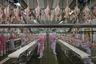 Стремительно растущие доходы в Китае привели к изменению рациона китайцев. Вырос спрос на мясо и молочные продукты.