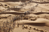 Участники «Марафона песков» (Marathon de Sables) в пустыне Сахаре.