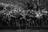 Игроки двух английских команд в Дербишире борются за мяч во время соревнований, приуроченных к Масленице. Состязания проходят в рамках народных гуляний, в которых участвует весь город.