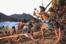 Луис Глазман «Битва при Ситке»