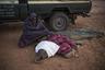 Осиротевшие и заброшенные слонята реабилитируются и возвращаются в дикую природу. Северная Кения.