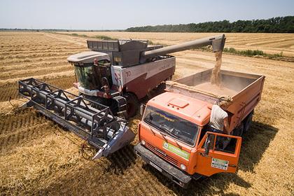 Россия стала рекордсменом по экспорту пшеницы в XXI веке