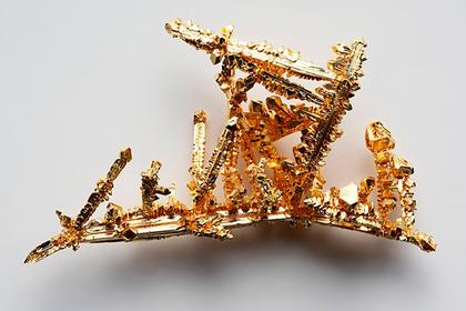 В МГУ перекрасили золото в синий цвет
