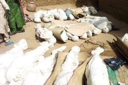 Четыре десятка африканцев перестреляли друг друга из-за овец