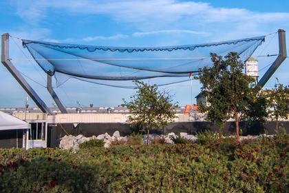 SpaceX развернула гигантскую паутину