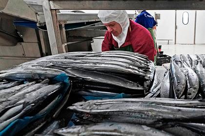 Российские рыбаки выступили с обращением к Путину