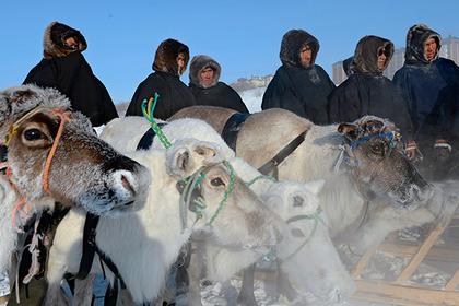 В Ненецком автономном округе появится новая профессия