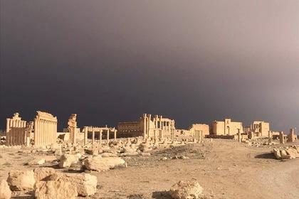 В Сирии обнаружили угрозу возрождения ИГ