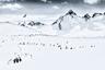 Это фотография из серии, посвященной исследованию пейзажей и атмосферы Антарктики. Фотограф обращает внимание общественности на красоту нетронутой природы и призывает принять меры по защите экосистем, которым грозит вымирание.  Шорт-лист профессиональной программы в категории «Пейзаж».