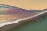 Стая фламинго, летящая над красочным африканским пейзажем. Снято с вертолета в Кении.  Снимок вошел в шорт-лист открытого конкурса в категории «Дикая жизнь».