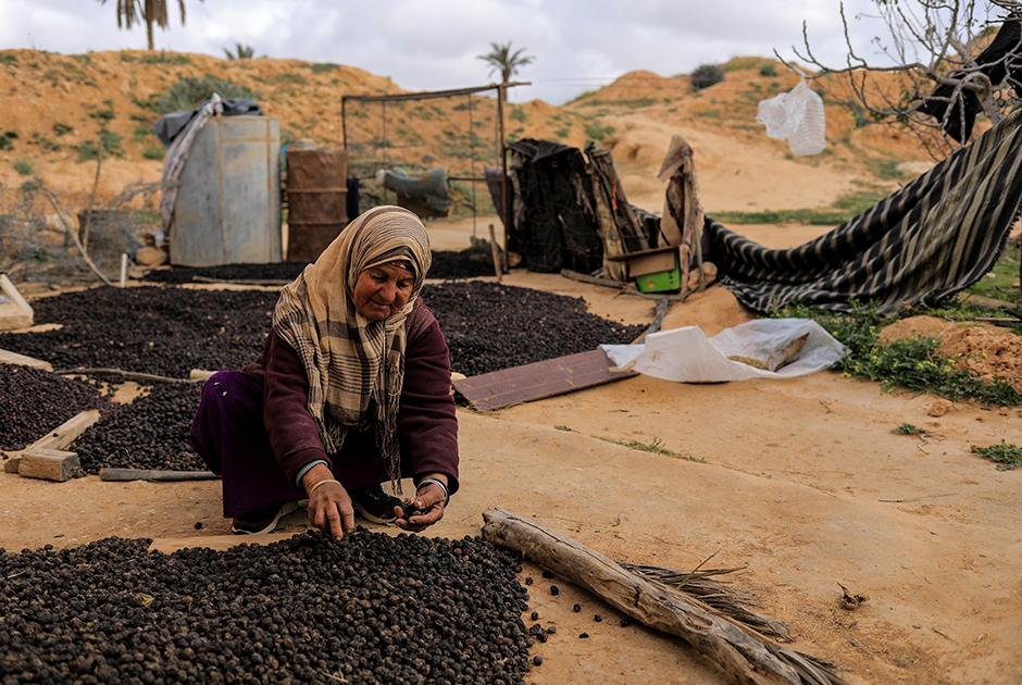 64-летняя Айча сушит оливки на окраине Матматы