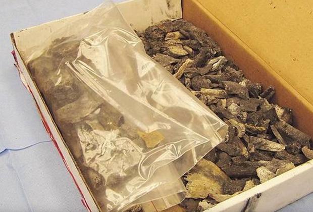В яме для костра на заднем дворе дома нашли остатки сожженных костей Терезы Холбак