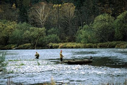 Из реки Амур выловили 26 пар человеческих кистей