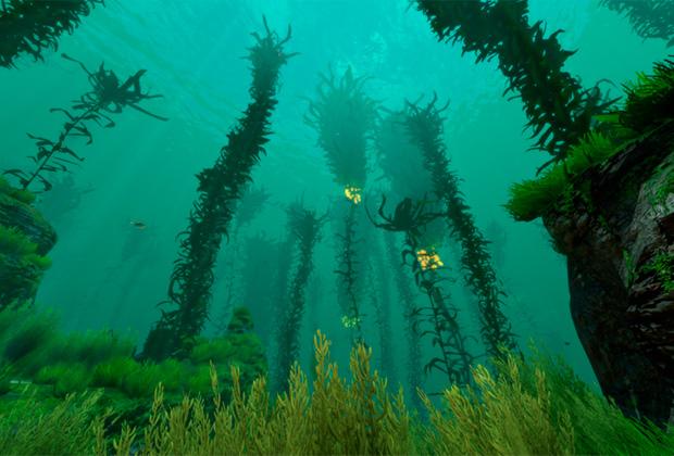 Водорослевый лес