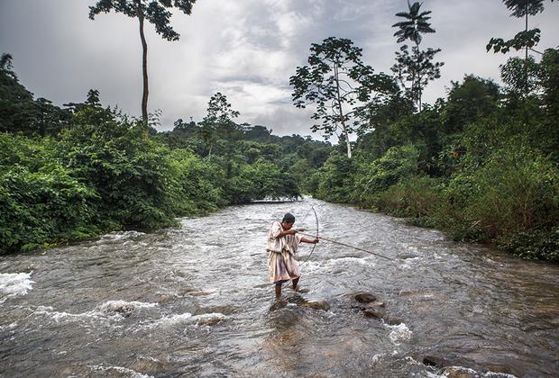 Ашанинка все еще практикуют рыбалку с луком. Для нее используются специальные стрелы-гарпуны с тремя или двумя прямыми зубцами. Раньше стрелы изготавливались из дерева, но сейчас ашанинка используют металлические наконечники.