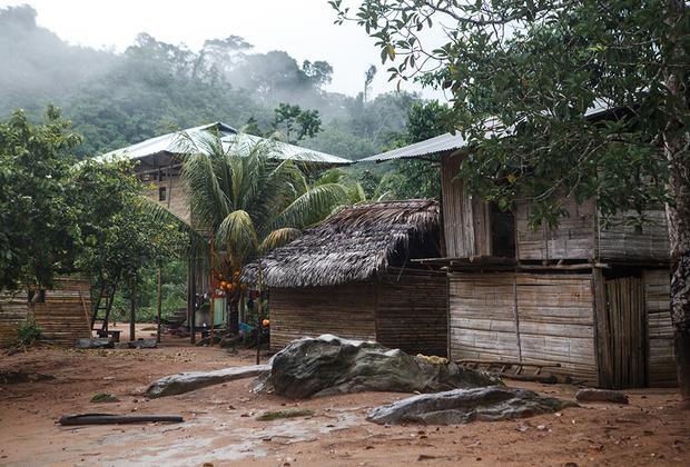 Дом яномами в поселке Окамо, Венесуэла. Яномами живут по обе стороны от хребта Сьерра-Парима на границе Венесуэлы и Бразилии. Это самое традиционное племя Венесуэлы: яномами, населяющие Сьерра-Париму, все еще живут в общинных домах шабоно и плохо знают испанский язык. Но вниз по Ориноко и ее притокам картина иная: несколько лет назад венесуэльское правительство начало строить яномами дома и школы, проводить электричество и ставить генераторы.  <br><br> Эти резкие перемены заглохли очень быстро: в стране начался затяжной кризис. Теперь яномами живут как будто на останках цивилизации, а стройматериалы, ЛЭП и генераторы, на которые не хватает бензина, либо проданы, либо используются совсем не по назначению. Традиционные дома же в некоторых общинах заменили хижины из пальмовых листьев и государственного шифера.