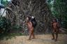 Тапиры — редкая добыча. Берега Ориноко бедны дичью, поэтому подстрелить взрослого тапира — большая удача для всей общины.