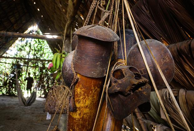 Дротики, тыква с хлопком и обезьяний череп — охотничьи атрибуты в доме Пенти.