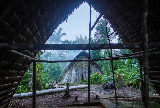 Традиционный дом ваорани — онко: двускатная крыша, покрытая пальмовыми листьями.