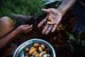 Распространенный продукт питания в Амазонии — личинки сури, пальмового долгоносика Rhynchophorus palmarum. Их достают из подгнивших пальмовых стволов, и едят во всех видах — живыми, сырыми, жареными во фритюре и на гриле. Говорят, что в сыром виде личинки нежные и сливочные, а обжаренными похожи на бекон.