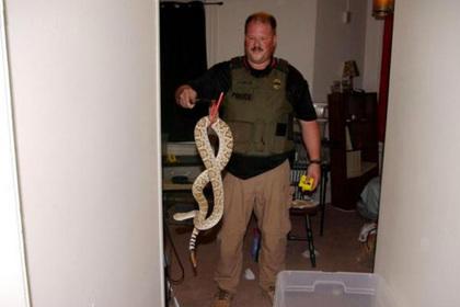 В квартире бывшего сотрудника зоопарка нашли кобру и еще 16 опасных рептилий